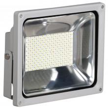 Прожектор светодиодный СДО 04-100 серый SMD IP65 (LPDO401-100-K03)
