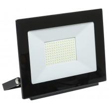 Прожектор светодиодный СДО 06-100 черный IP65 6500K (LPDO601-100-65-K02)