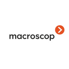 Программное обеспечение (опция) Лицензия на работу с 1 IP-камерой MACROSCOP ST (х64)